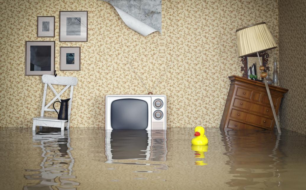 A house flooded because of backed up plumbing